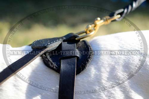 Well designed Bull Terrier dog harness