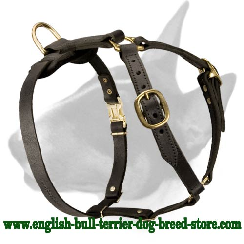Adjustable Tracking Leather Bull Terrier Harness [H7###1090 Leather