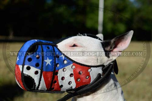Hand-painted leather dog muzzle