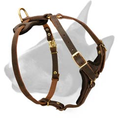 Leather dog harness for walkign and light training