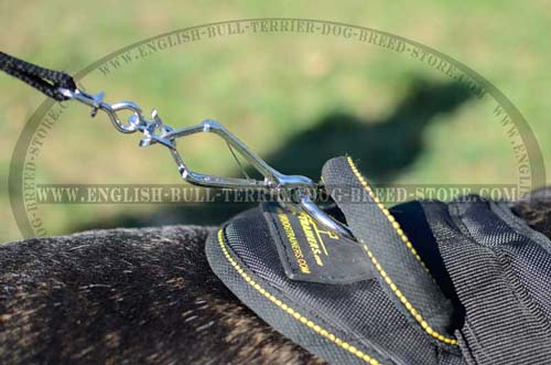 Dog harness with special control handle