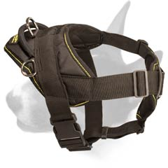 All-seasons dog harness
