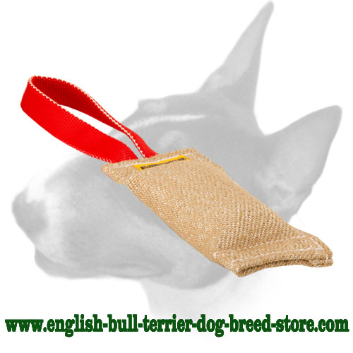 English Bull Terrier Jute Bite Tug with One Handle for Training Puppies