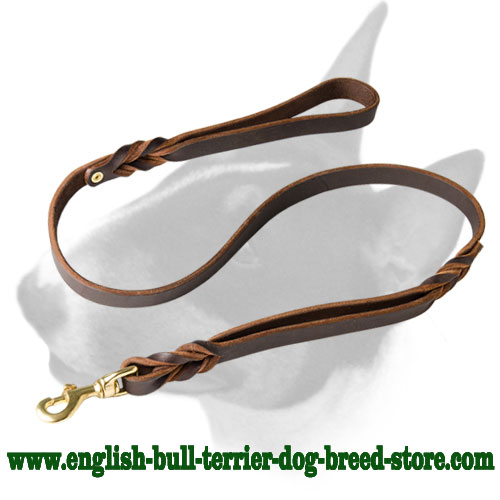 English Bull Terrier Braided Leather Dog Leash with 2 Handles