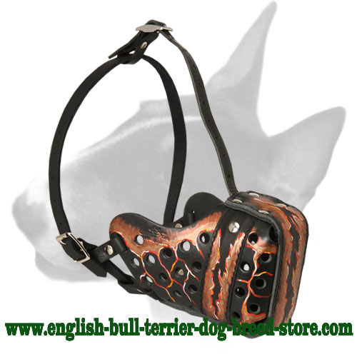 Magma Painted Leather Bull Terrier Muzzle for Training