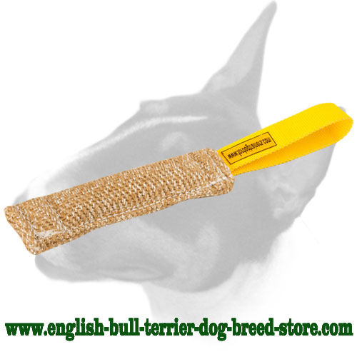 English Bull Terrier Puppy Bite Tug with Convenient Handle for Training