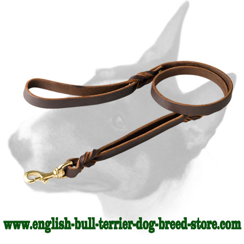 Leather dog leash for English Bull Terrier