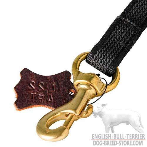 Solid Brass Snap Hook on Strong Nylon Dog Leash