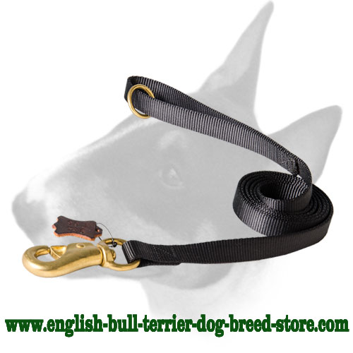 English Bull Terrier nylon dog leash with brass floating O-ring