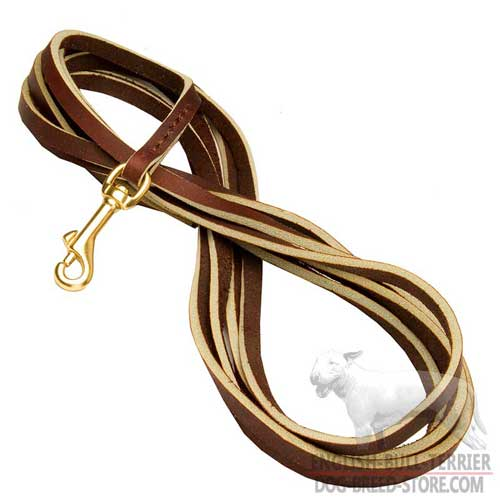 Bull Terrier Training Supplies: Extra Long Leather Dog Leash With Solid Brass Hook