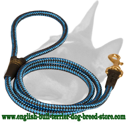 Solid Brass Snap Hook On Strong Blue Nylon Dog Leash