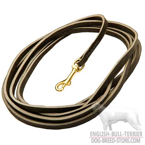 Training Extra Long Leather Dog Leash