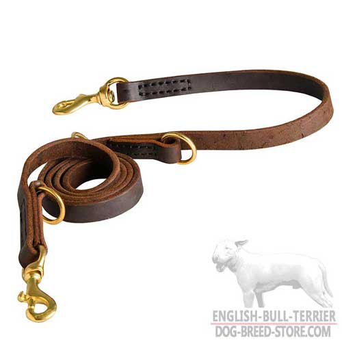Extra Strong Leather Dog Leash for Effective Training