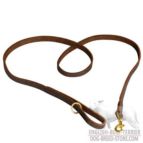 Durable Leather Dog Leash With Shiny Gold-Like Brass Fittings