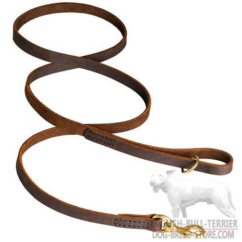Reliable Stitched Leather Dog Leash for Walking and Training