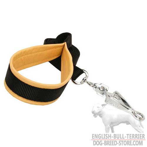 Reliable Nylon Dog Leash With Support Material On Handle