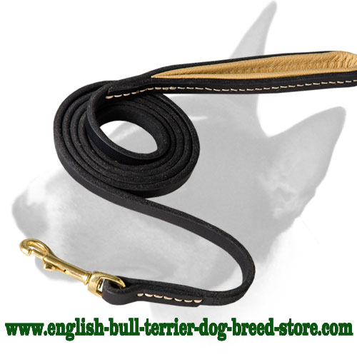 Leather dog leash for walking and training for English Bull Terrier