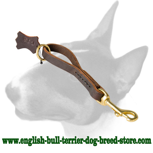 English Bull Terrier leather dog leash
