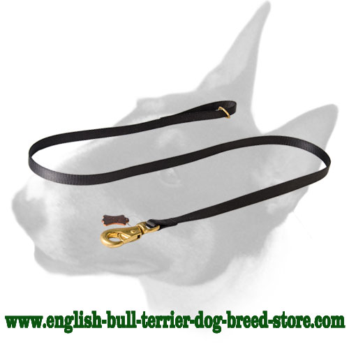 Nylon dog leash with brass hardware for English Bull Terrier
