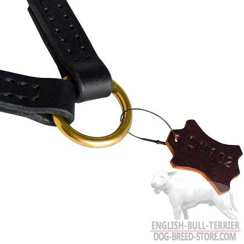 Wide O-ring of Braided Leather Bull Terrier Coupler