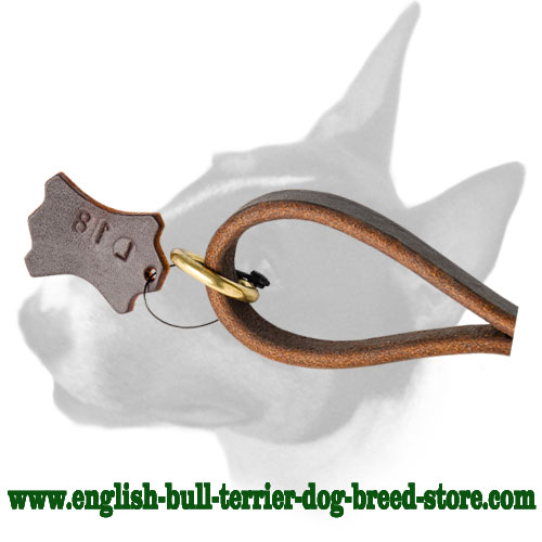 Short leather pull tab dog leash for English Bull Terrier