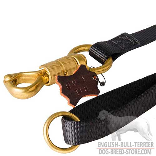 Strong Brass Snap Hook with Smart Lock on Professional Nylon Dog Leash