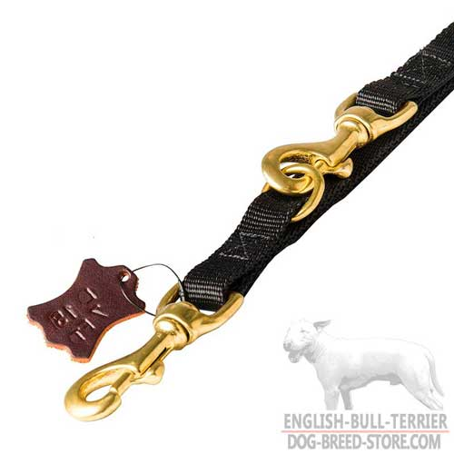 Extra Durable Brass Snap Hooks on Nylon Dog Leash
