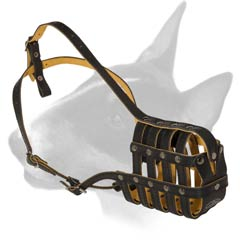 English Bull Terrier leather muzzle