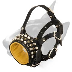 Bull Terrier Muzzle for any occasion