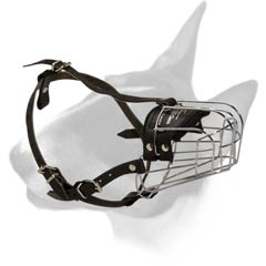 Bull Terrier Metal Muzzle with padding